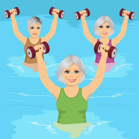 group of senior women making aqua gym exercises with dumbbells in swimming pool Vektorové ilustrace