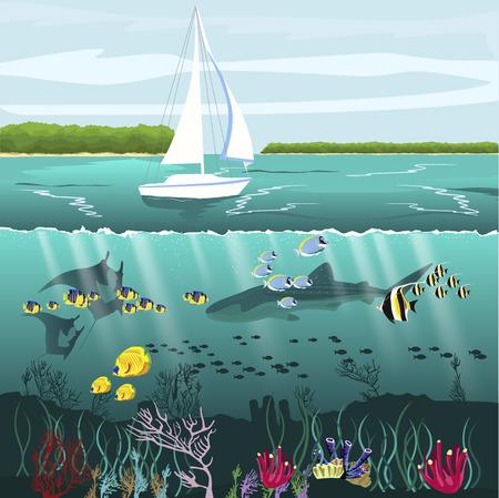Vue sous-divisée du yacht et des paysages sous-marins avec la vie marine Vecteurs