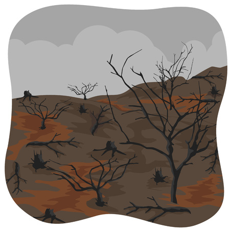 lifeless: illustration of charred trees after a forest fire