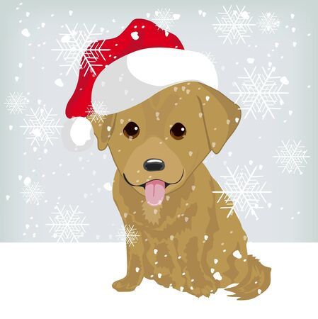 labrador puppy: Cute labrador puppy in a Santa Claus hat sitting on snow