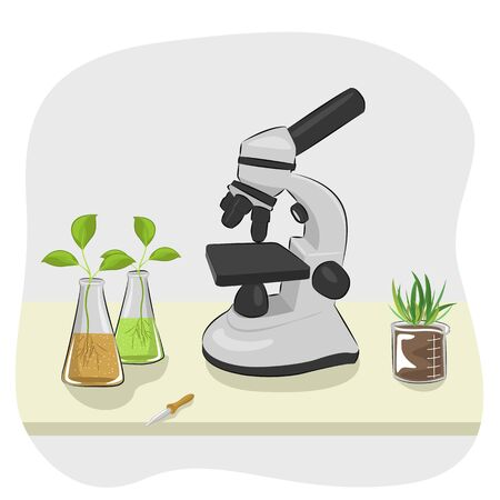 plants growing: microscope, pipette and plants growing in laboratory flasks on the table