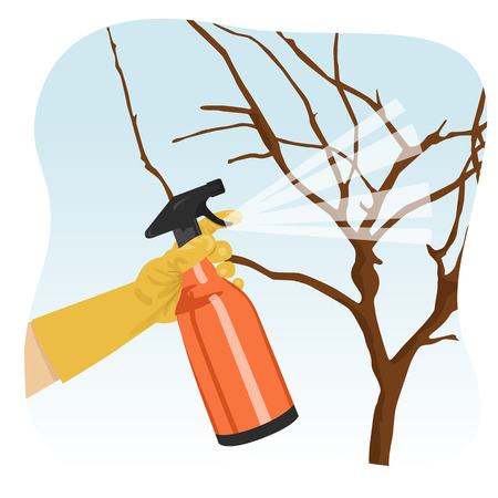hand spraying a tree in garden with protecting spray