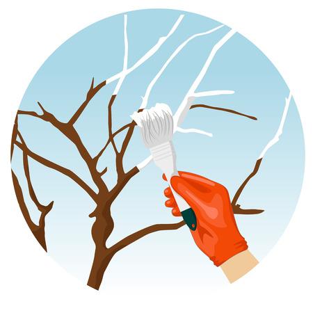 whitewash: Whitewashing of trees in the spring in the garden Illustration