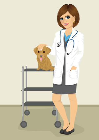labrador puppy: young veterinarian woman standing with labrador puppy in her office veterinary clinic Illustration