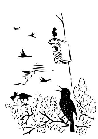 starling: Hand drawn bird sitting on a branch under nesting box