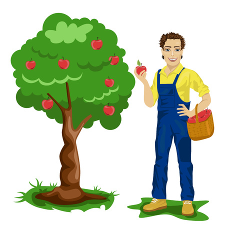 orchard: Young man picking apples in an orchard isolated over white background