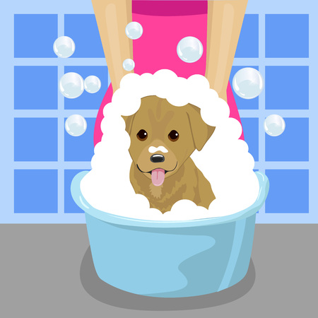 groomer: pet groomer washing a dog with soap foam in blue wash-basin in bathroom Illustration