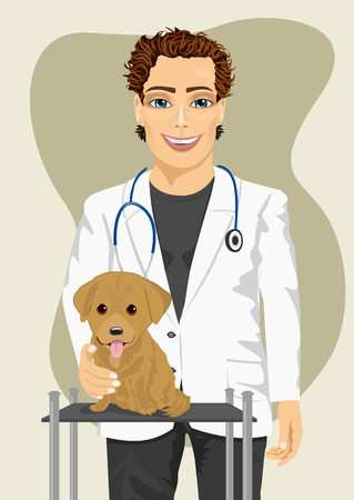 labrador puppy: veterinarian doctor making a check-up of a Labrador puppy Illustration