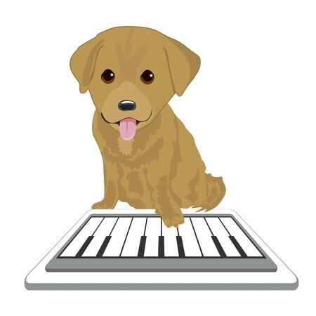 labrador puppy: Labrador puppy touching screen tablet playing with piano app over white background
