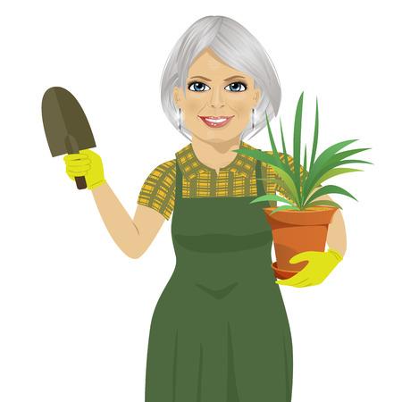 senior gardening woman holding green Chlorophytum plant in pot and trowel Illustration