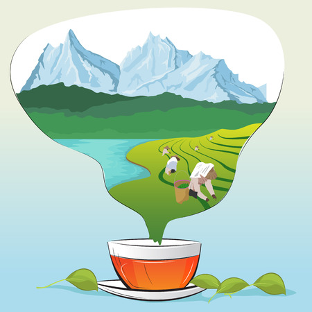 Tea cup with leaves and tea plantations in form of steam