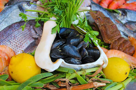Mussels, shrimp, lobsters, fishes with fresh herbs and lemon on ice Stock Photo