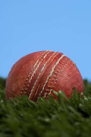 cricket ball on grass and a blue sky Imagens