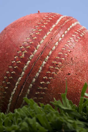 bowl game: cricket ball on grass and a blue sky Stock Photo