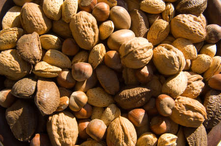 assorted, whole mixed nuts including walnuts, filberts, almonds, pecans.  Great for background Imagens