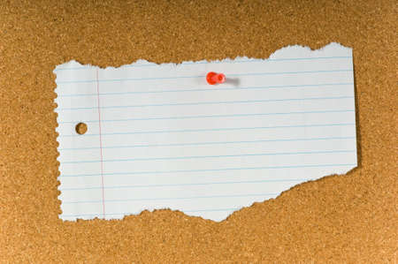 torned: blank Torn notebook paper on cork bulletin board