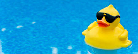 Yellow Rubber duck with shades on blue water, space for copy Фото со стока