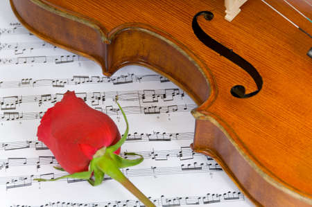 violins: A violin a single red rose and sheet music, image of the beauty of music and the arts