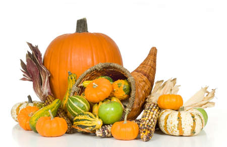 provision: Cornucopia with fall harvest items including pumpkins, gords, apples and indian corn
