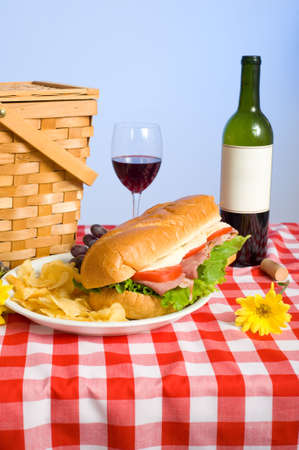 A picnic lunch on a red and white gingham tablecloth including a sandwich, chip, grapes wine and a picnic basket in front of a blue sky background photo