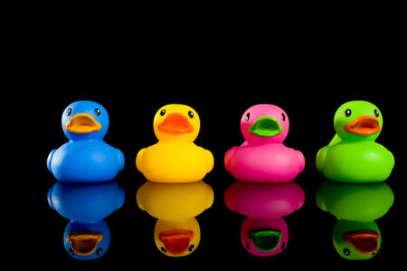 animal body part: A variety of colorful ducks on a black background, individualtiy, uniqueness or variety concept.