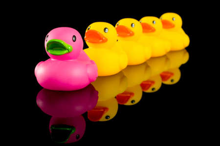animal body part: a row of yellow rubber ducks, childrens toys lined up in a row being led by the pink duck.  Concept of standing out from a crowd or individuality
