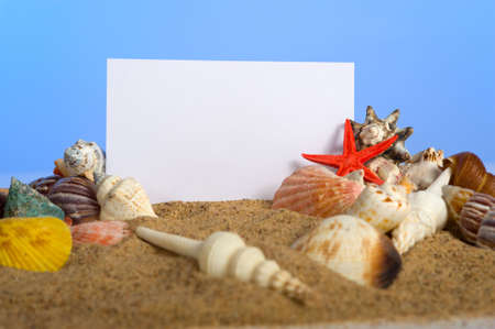 A blank notecard surrounded by sea shells and blue sky with copy space Stock Photo - 3874917