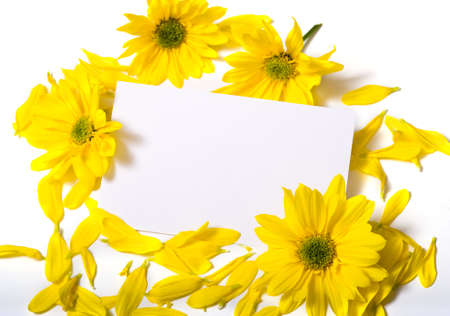 notecard: A  white note-card on a white background surrounded by yellow daisies with copy space Stock Photo