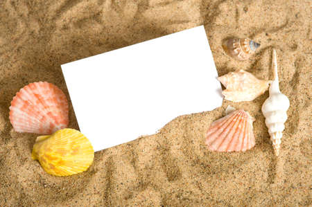 notecard: A blank notecard surrounded by sea shells and sand with copy space