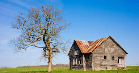 An old dilapidated farm house or store  next to a dead tree in the middle of a green springtime field or meadow. Illustration of the passage of time or the contrast between new and old, life and death