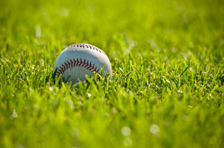A white leather baseball on a grass field on a sunny day, with copy space
