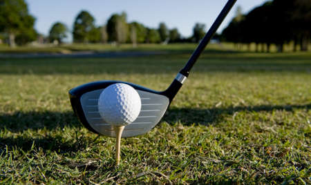 dimple: A golf ball and club on a golf course
