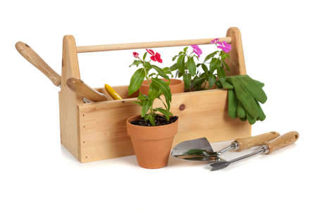 gardening tools: A gardeners tote box on a white background with tools, plants and gloves