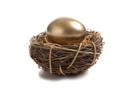 A golden egg in a birds nest on a white background photo