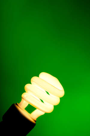 A compact flourescent light bulb on a dark green background with copy space  photo