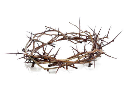 suffering:  A crown of thorns on a white background