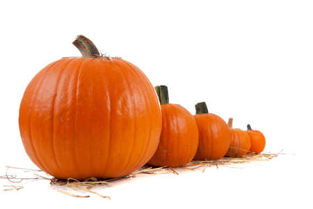 Assorted sizes of pumpkins with hay on a white background
