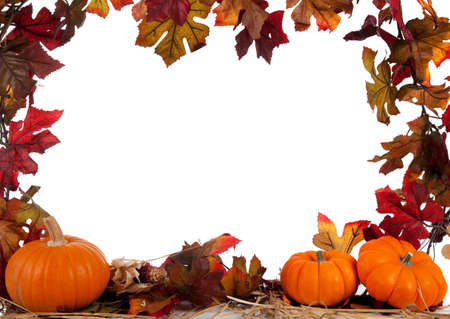 indian thanksgiving: Border of Assorted sizes of pumpkins with hay on a white background with fall leaves