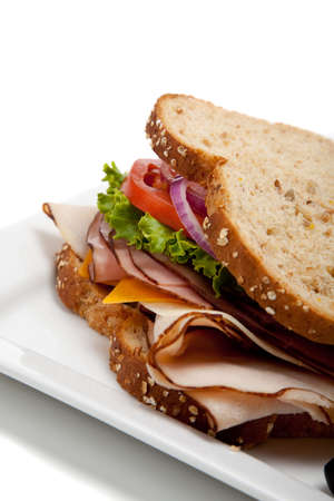 A turkey sandwich with turkey, lettuce, onion, tomato and cheese on whole grain bread on a white background