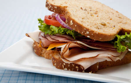 A turkey sandwich with turkey, lettuce, onion, tomato and cheese on whole grain bread on a white background Stock Photo - 5808410