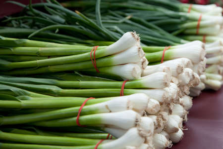 green onions: Several bundles of green onions