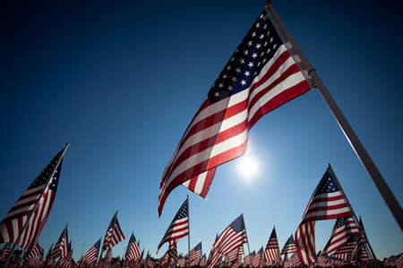 commemorating: Large group of American Flags commemorating a national holiday, veterans day, independence day, 911, etc