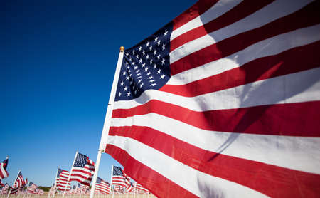 Large group of American Flags commemorating a national holiday, veterans day, independence day, 9/11, etc Stock Photo - 12654048