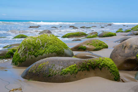 california coast: A seascape with moss covered rock on California coast