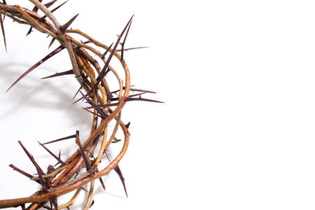 resurrected: Crown of thorns on a white background Easter religious motif commemorating the resurrection of Jesus- Easter Stock Photo