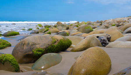 waterfront: A seascape with moss covered rock on California coast