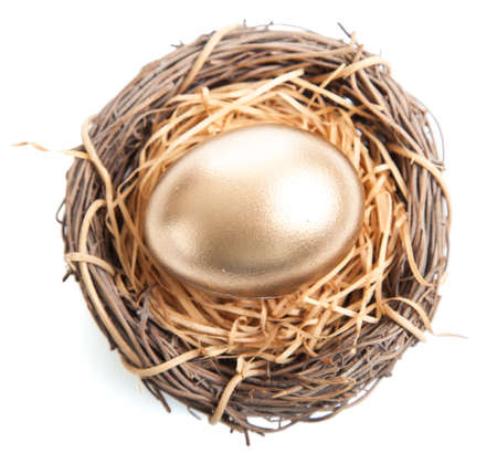 A Golden egg in nest on white background 스톡 콘텐츠