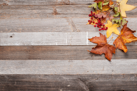 Autumn leaves, Background texture with old wooden table and yellow fallen leaves.