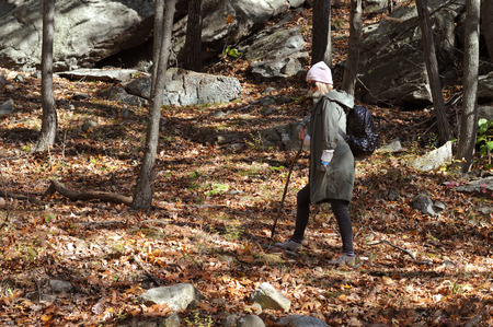Hiker walking in autumn forest in the mountains. Hiking, camp, adventure, traveling and friendship concept.
