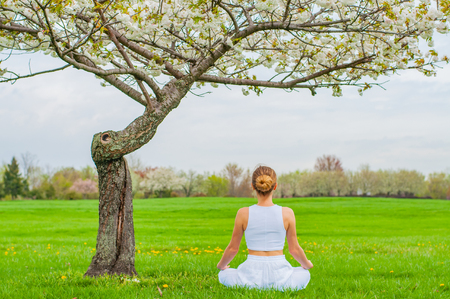 Beautiful young woman is practicing yoga or meditating sitting in Lotus pose near blossom tree at the park. Meditation Padmasana pose.